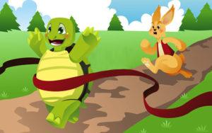 tortoise-and-the-hare-300x188 O jabuti é vagaroso e deixa a gente curioso